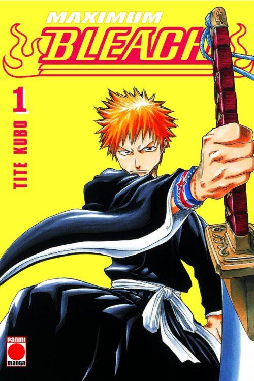 Manga Bleach Maximum