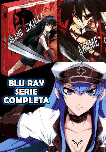 Akame ga Kill! Bluray Serie Completa