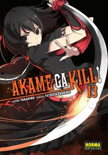 Akame ga Kill! Manga 13