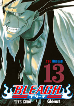 Bleach manga Tomo 13
