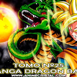Manga Dragon Ball 25
