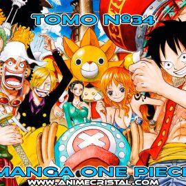 Manga One Piece 34