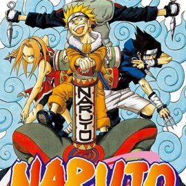Manga Naruto 05