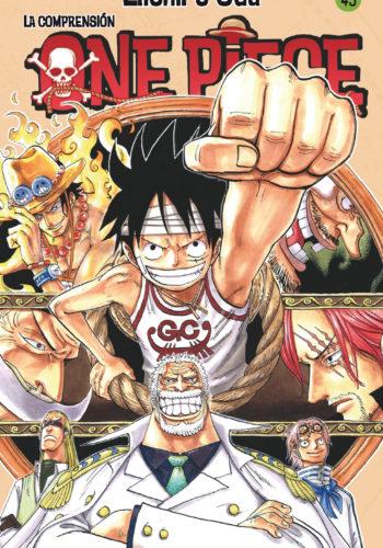 Manga One Piece Tomo 45